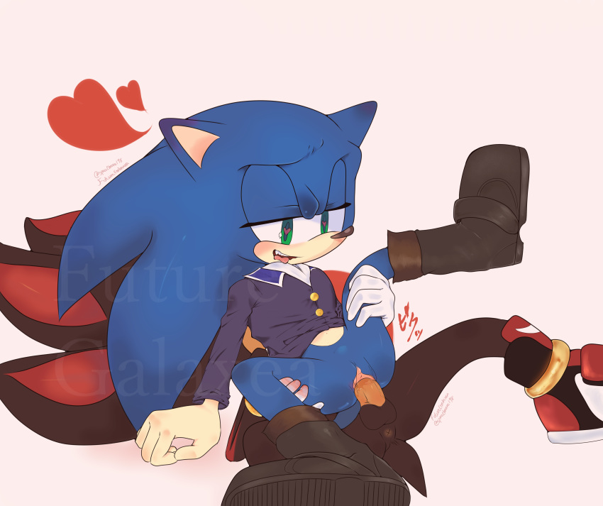 and the hedgehog shadow rouge Fi the legend of zelda